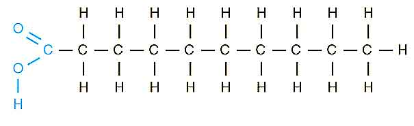 image of Saturated Fatty Acid