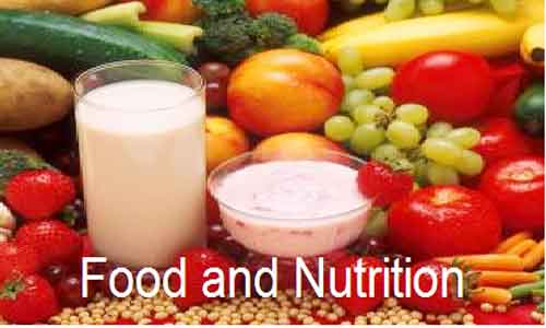 image of Food and Nutrition