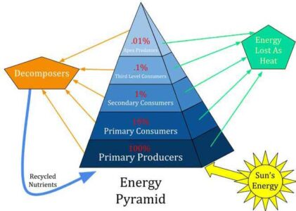 image of Energy Pyramid